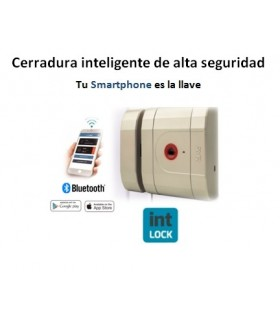 Cerradura seguridad invisible int Lock, AYR
