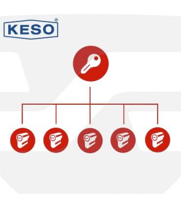 Amaestramiento  cilindros KESO, 8000 y 4000 Ω