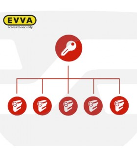 Amaestramiento  cilindros EVVA