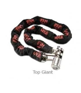 Antirrobo de cadena Top Giant, IFAM